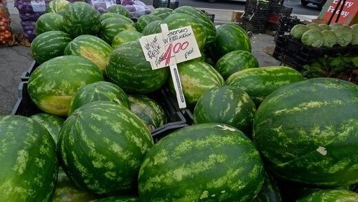 seed watermelon